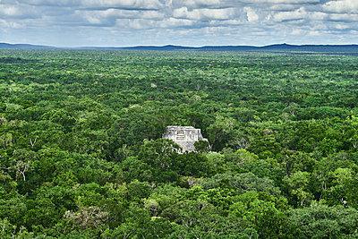 Maya pyramid in biosphere reservation Calakmul, Mexico - p1686m2288529 by Marius Gebhardt