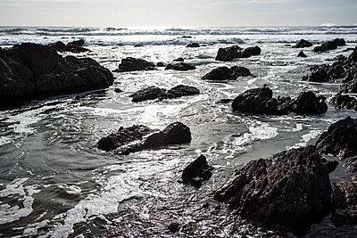 Felsen bei auflaufendem Wasser an der Walisischen Küste - p1057m1586857 von Stephen Shepherd