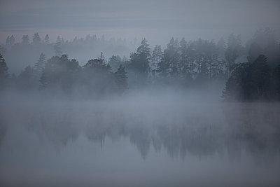 Sweden, Misty morning at a lake - p1687m2284326 by Katja Kircher