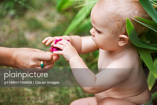 p1166m1164404 von Cavan Images