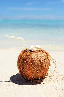 Coconut - p045m716343 by Jasmin Sander