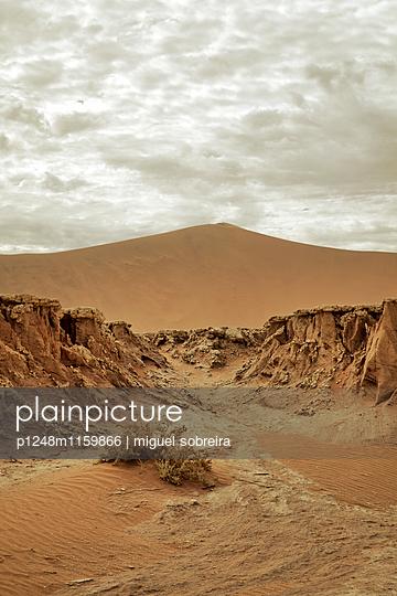 Wüste in Namibia - p1248m1159866 von miguel sobreira