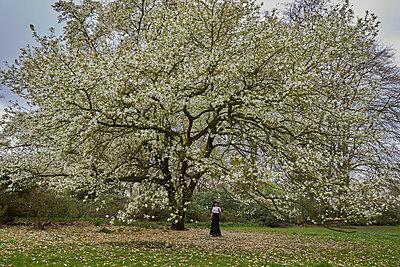 Junge Frau unter einem blühenden Baum - p1491m2175991 von Jessica Prautzsch