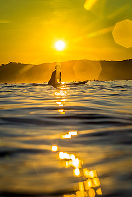 Female surfer at evening sun  - p1108m1118827 by trubavin