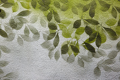Painted wall - p415m1191202 by Tanja Luther