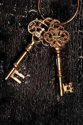 Golden keys - p451m1017401 by Anja Weber-Decker