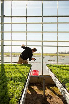 Cleaning - p902m1039481 by Mölleken