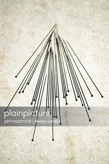 Needles - p971m2231078 by Reilika Landen