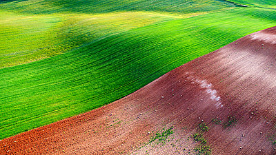 aerial photographs taken with drone on a cereal field in Junquera de Henares. Guadalajara Spain - p1166m2130521 by Cavan Images