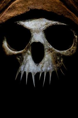 Skull - p1228m1109082 by Benjamin Harte
