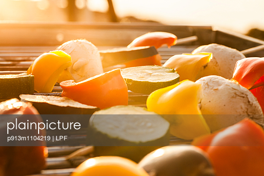 Grill grid - p913m1104219 by LPF
