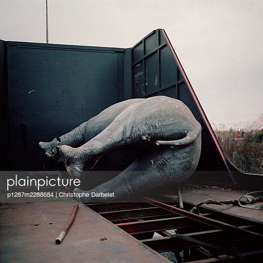 Giant plastic elephant on truck bed  - p1287m2288684 by Christophe Darbelet