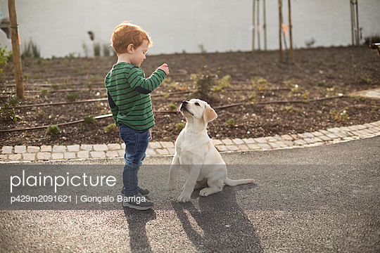 Boy giving pet puppy training treat - p429m2091621 by Gonçalo Barriga