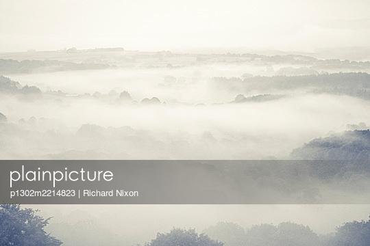 Early morning misty landscape - p1302m2214823 by Richard Nixon
