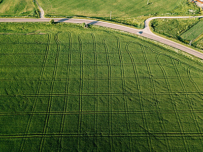 Aerial view of agricultural landscape during sunny day - p1166m2025361 by Cavan Images