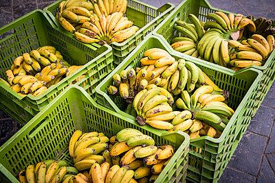 Boxes of bananas at Mercado da Graca; Ponta Delgada, Sao Miguel, Azores, Portugal - p442m1180090 by Dosfotos