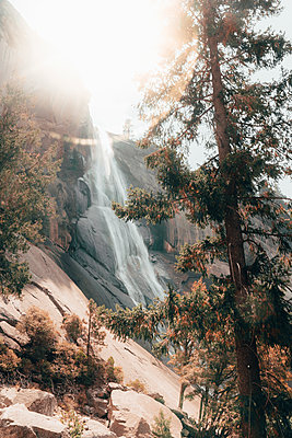 Nevada Fall through trees against backlight creating sun flare - p1166m2159491 by Cavan Images