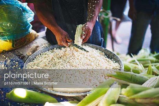 Markt in Mexiko - p1167m971661 von Maria Schiffer