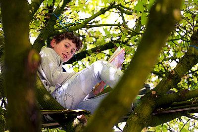 Junge im Baum - p1212m1440574 von harry + lidy