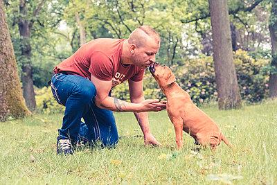 Hundeerziehung - p299m1138419 von Silke Heyer