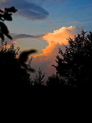 Abendsonne - p1279m1461380 von Ulrike Piringer