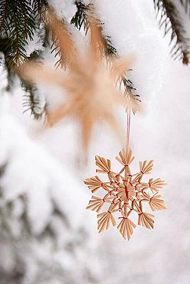 Christmas decoration - p533m1016148 by Böhm Monika