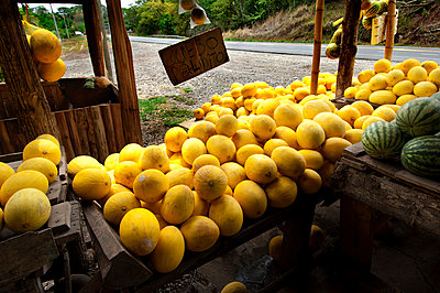 Costa Rica, Caldera, Pacific Coast, Fruit Stand, Melons - p651m860507 by John Coletti photography