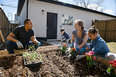Family planting flowers in sunny garden - p1192m2094598 by Hero Images