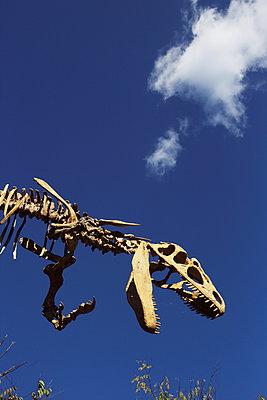 Dinosaur - p1063m953948 by Ekaterina Vasilyeva