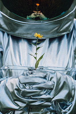 Spaceman holding flower, watching it grow - p300m2030553 by Vasily Pindyurin