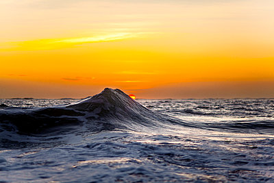 Ocean wave at sunrise - p343m1475705 by Sean Davey