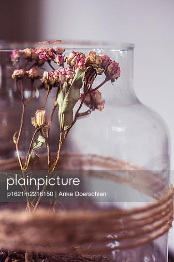 Glasbehälter mit verwelkten Blumen - p1621m2216150 von Anke Doerschlen