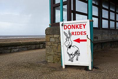 Donkey rides - p1057m890691 by Stephen Shepherd