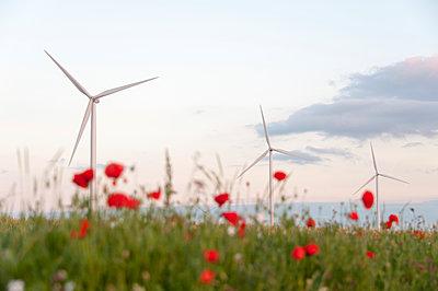 Windkraft, Eure-et-Loir, Frankreich - p1079m1074162 von Ulrich Mertens