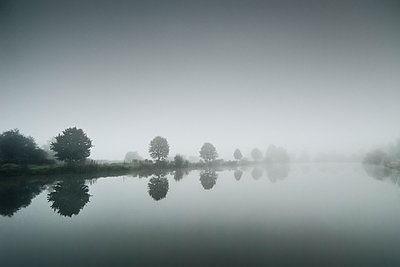 Trees at the lake - p1137m939515 by Yann Grancher