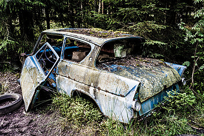 Autowrack im Autofriedhof Ryd - p1463m2192599 von Wolfgang Simlinger