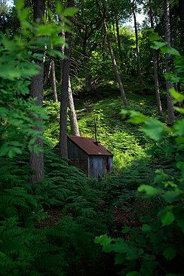 Jagdhütte im Wald - p179m1467574 von Roland Schneider