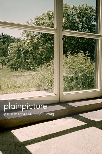 Blick aus dem Fenster auf den Garten - p1210m1564774 von Ono Ludwig