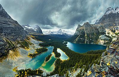 View of Lake O Hara and mountains, Yoho National Park, Field, British Columbia, Canada - p343m1578114 by Marko Radovanovic