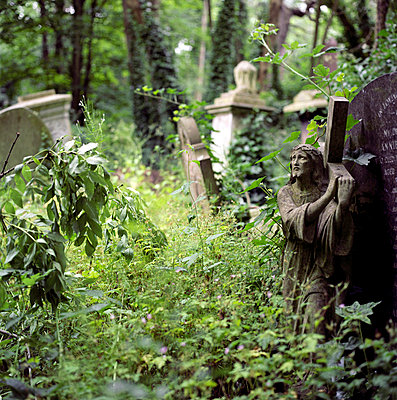 Deserted graveyard - p3420358 by Thorsten Marquardt