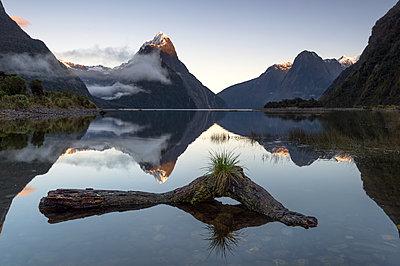 Mitre Peak, Milford Sound, Fiordland National Park, UNESCO World Heritage Site, South Island, New Zealand - p871m2068652 by Ed Rhodes