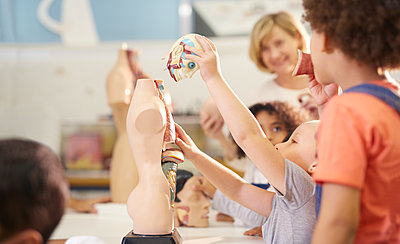 Kids playing with anatomical models in science center - p1023m2016951 by Trevor Adeline