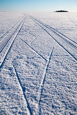 Langlauf auf dem zugefrorenen Bottnischen Meerbusen - p1079m1182233 von Ulrich Mertens