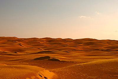 Sahara - p548m911689 by Fred Leveugle