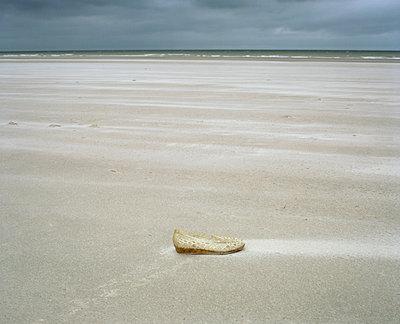 Dunkerque, Verlorener Schuh - p1083m1069513 von Alain Greloud