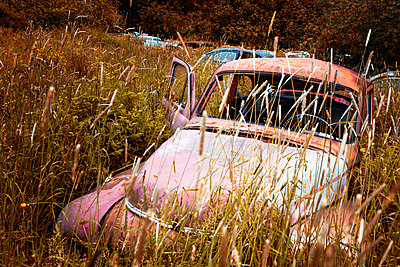 Car wrecks in the countryside - p1168m2205454 by Thomas Günther