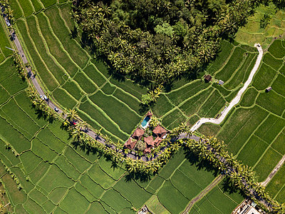Indonesia, Bali, Ubud, Aerial view of rice fields - p300m2042652 by Konstantin Trubavin