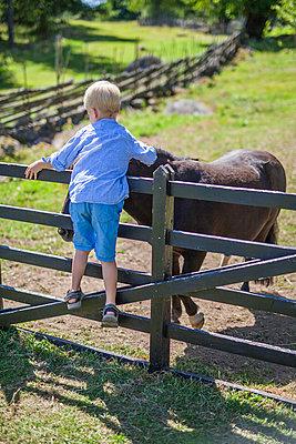 Boy stroking donkey - p312m1499111 by Malin Kihlstrom