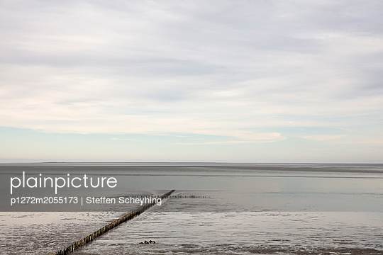 Wattenmeer - p1272m2055173 von Steffen Scheyhing