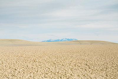 The desert, flat landscale at dusk near Factory Butte.  - p1100m1451035 by Mint Images